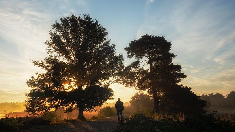 Walking into the sunrise van Lex Schulte