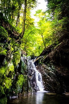Waterval in de groene bossen van Winterberg Sauerland van Björn Jeurgens