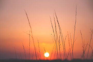 Sonnenuntergang von Nicky Kapel