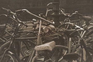 Radfahren Dschungel von Mieneke Andeweg-van Rijn