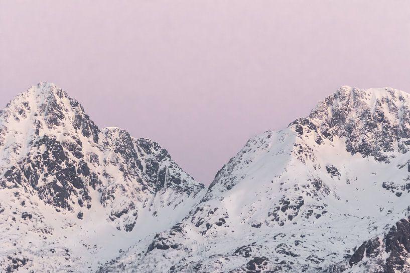 Bergen in sneeuw bij zonsondergang   Roze pastel reisfotografie   Lofoten, Noorwegen van Dylan gaat naar buiten