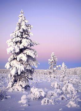 Wintermärchen von Wiltrud Schwantz