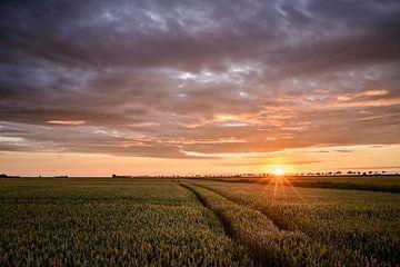 zonovergoten van Marnefoto .nl