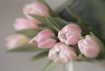 Roze tulpen van Ellen Driesse