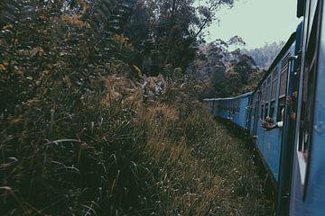 Zug Sri Lanka Ella - Kandy von yasmin meraki