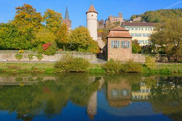 Wertheim at the Tauber Riverside van Gisela Scheffbuch