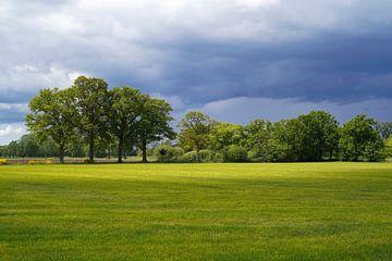 Landschap van platteland met dreigende regenwolken van Tom Van Dyck