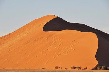 Dune 45 van Esther van der Linden