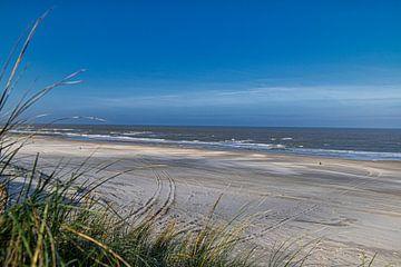 Strand Vlieland von Marly De Kok