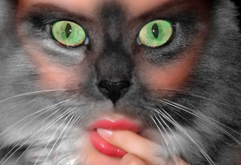 Donna gatta-Poes-Female cat-Chatte-Weibliche Katze-Mujer gato von aldino marsella