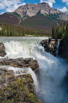 Athabasca Falls, Jasper National Park, Alberta, Kanada von Alexander Ludwig