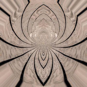 Spin? van Paul De Keizer