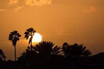 Palmbomen en de ondergaande zon van Michel Geluk