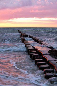 Ostsee: Strand mit Buhnen bei Ahrenshoop  im Abendrot von t.ART