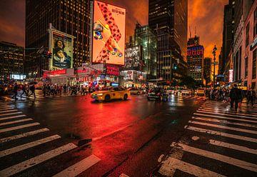 Een jungle van kleur van Joris Pannemans - Loris Photography
