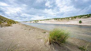 Graspol in het duingebied van Petten aan Zee van