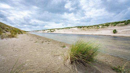 Graspol in het duingebied van Petten aan Zee