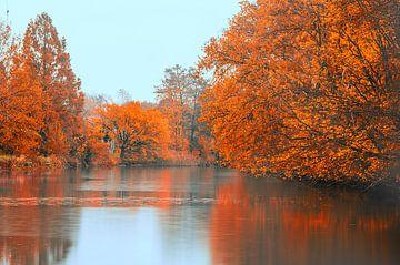 Herfst  von Sylvain  Poel