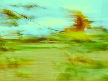 Sonnenblumen im Wind 10 von Andreas Gerhardt