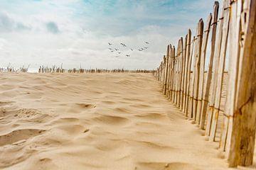 Op het strand van
