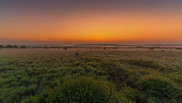 Bevor die Sonne aufgeht von Koos SOHNS   (KoSoZu-Photography)