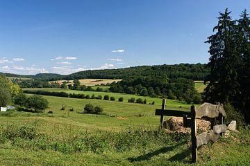 Fraai Frans landschap in de buurt van Montmédy van Bert Meijerink