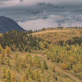 Idaho in Switzerland van Bas Koster