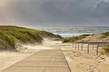 Sturm an der Küste von eric van der eijk