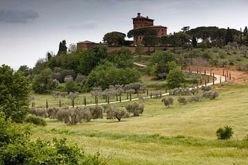 Tuscany van Andreas Müller