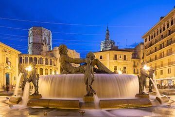 Brunnen Plaza de la Virgen Valencia von Elroy Spelbos