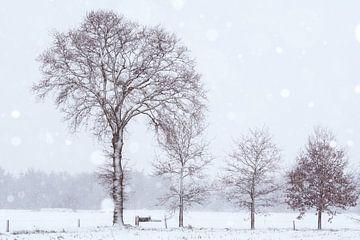 Schneelandschaft von Francis Dost