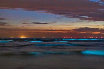 Blauwe zee in de nacht van Karin Riethoven