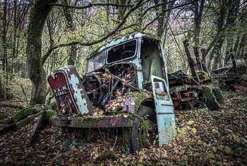 Vrachtwagen in het bos van Inge van den Brande
