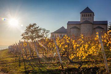 Herbstsonne auf Basilika Johannisberg im Rheingau van Christian Müringer