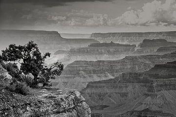 """#6 Grand Canyon, USA """" massieve vormen """" von John Driessen"""