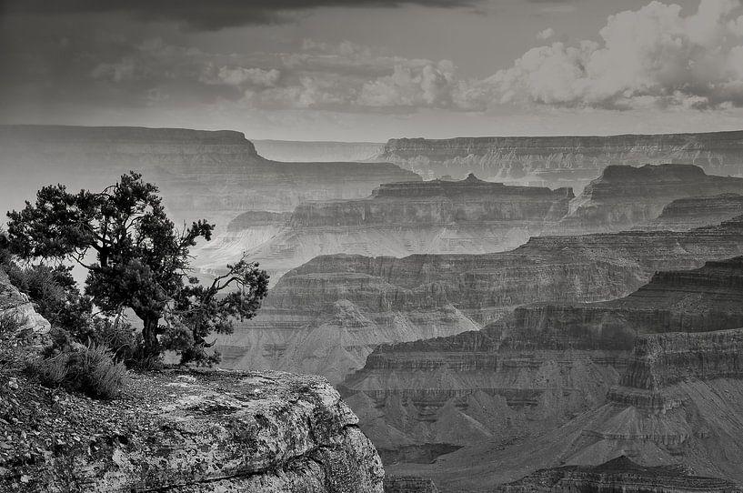 "#6 Grand Canyon, USA "" massieve vormen "" van John Driessen"