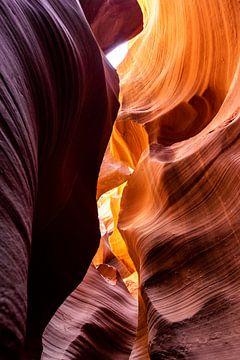 Antelope Canyon von Jack Swinkels