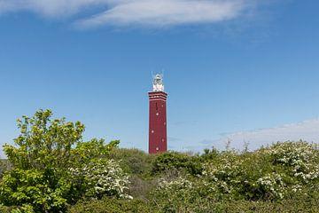 Leuchtturm Westhoofd in Ouddorp von Charlene van Koesveld