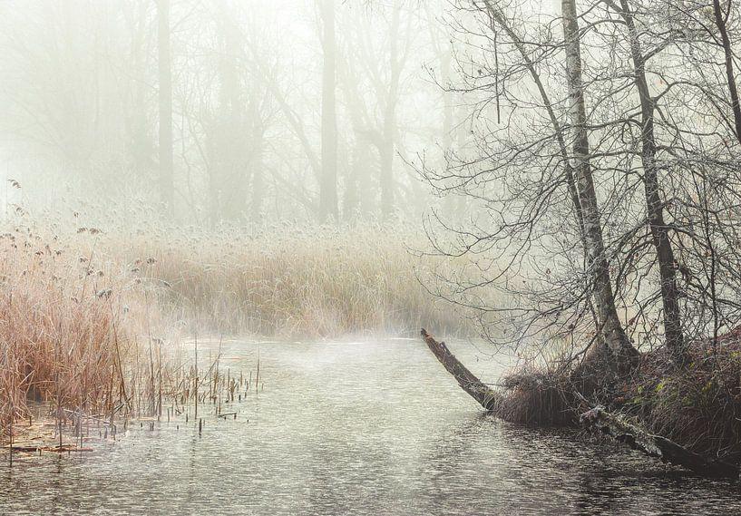 Sfeervolle ochtend bij DeLuysen van Peschen Photography