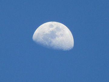 Maan in avondschemering van Suzanne de Jong