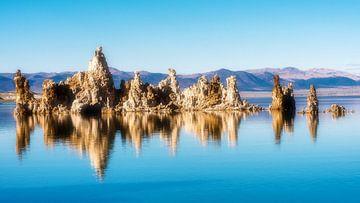 Reflectie van kalkhoudende tufsteenformaties in het Monomeer in Californië, VS van Dieter Walther