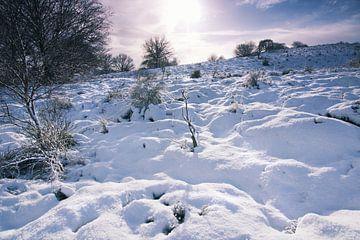 Winterlandschap 2 von Martijn van Huffelen