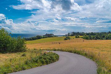 Mooi Deens landschap van Tina Linssen