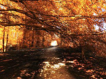Licht aan het eind van de tunnel van goud van Jasper Bloemsma