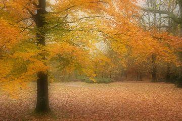 Herbst Wald Leersum von Mieke Korsten
