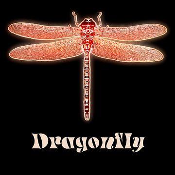 Dragonfly von Leopold Brix