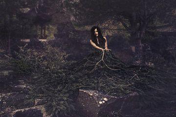 De bosnimf in de nacht. van Elianne van Turennout