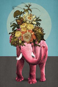About Pink Elephants
