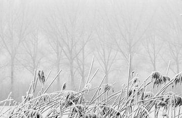 Winters tafereel van Hans Lubout