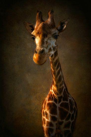 Giraf van Claudia Moeckel